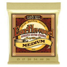 Ernie Ball Earthwood Bronze Medium.013-.056